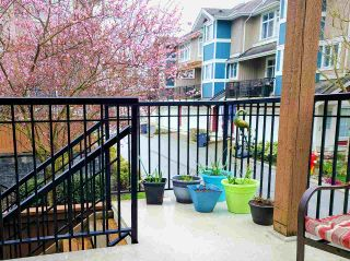 """Photo 24: 29 6036 164 Street in Surrey: Cloverdale BC Townhouse for sale in """"Arbour Village"""" (Cloverdale)  : MLS®# R2560746"""