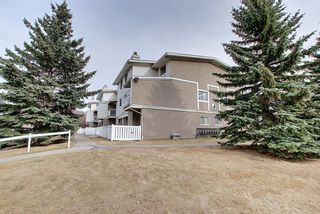 Photo 33: 140 3015 51 Street SW in Calgary: Glenbrook Row/Townhouse for sale : MLS®# A1092906
