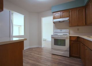 "Photo 8: 105 8725 ELM Drive in Chilliwack: Chilliwack E Young-Yale Condo for sale in ""ELMWOOD TERRACE"" : MLS®# R2464677"