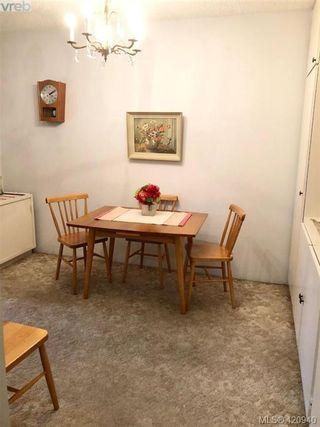 Photo 8: 313 1025 Inverness Rd in VICTORIA: SE Quadra Condo for sale (Saanich East)  : MLS®# 833149