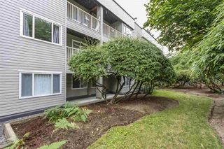Photo 20: 113 1209 HOWIE Avenue in Coquitlam: Central Coquitlam Condo for sale : MLS®# R2284980