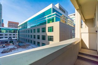Photo 18: 304 1117 1 Street SW in Calgary: Beltline Apartment for sale : MLS®# A1060386