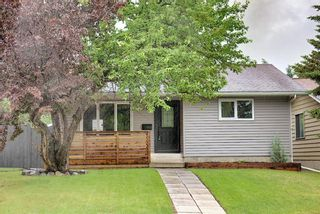 Photo 44: 428 Queensland Place SE in Calgary: Queensland Detached for sale : MLS®# A1123747