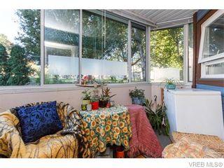 Photo 16: 102 2529 Wark St in VICTORIA: Vi Hillside Condo for sale (Victoria)  : MLS®# 742540