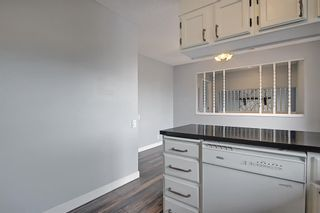 Photo 14: 155 Templevale Road NE in Calgary: Temple Detached for sale : MLS®# A1119165
