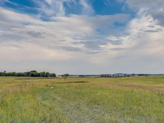 Photo 13: 14ac NORTH of DUNBOW Rd 48 Street: Rural Foothills County Residential Land for sale : MLS®# A1092764