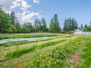 Photo 38: 3390 HENRY ROAD in CHEMAINUS: Du Chemainus House for sale (Duncan)  : MLS®# 822117