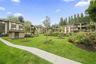 """Photo 20: 136 9101 HORNE Street in Burnaby: Government Road Condo for sale in """"WOODSTONE PLACE"""" (Burnaby North)  : MLS®# R2505818"""