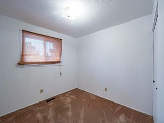 Photo 20: 547 Sabrina Road SW in Calgary: Southwood Detached for sale : MLS®# A1146796