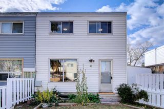 Main Photo: 41 Doverdale Mews SE in Calgary: Dover Semi Detached for sale : MLS®# A1154583