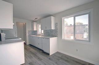 Photo 23: 3036 Doverville Crescent SE in Calgary: Dover Semi Detached for sale : MLS®# A1148570