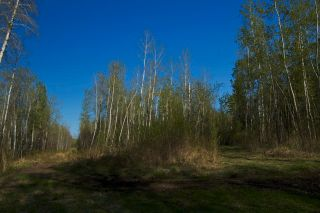 Photo 15: RR 21 TWP 565A Lake Nakamun: Rural Lac Ste. Anne County Rural Land/Vacant Lot for sale : MLS®# E4246330