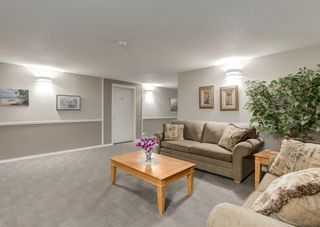 Photo 32: 3229 3229 MILLRISE Point SW in Calgary: Millrise Apartment for sale : MLS®# A1116138