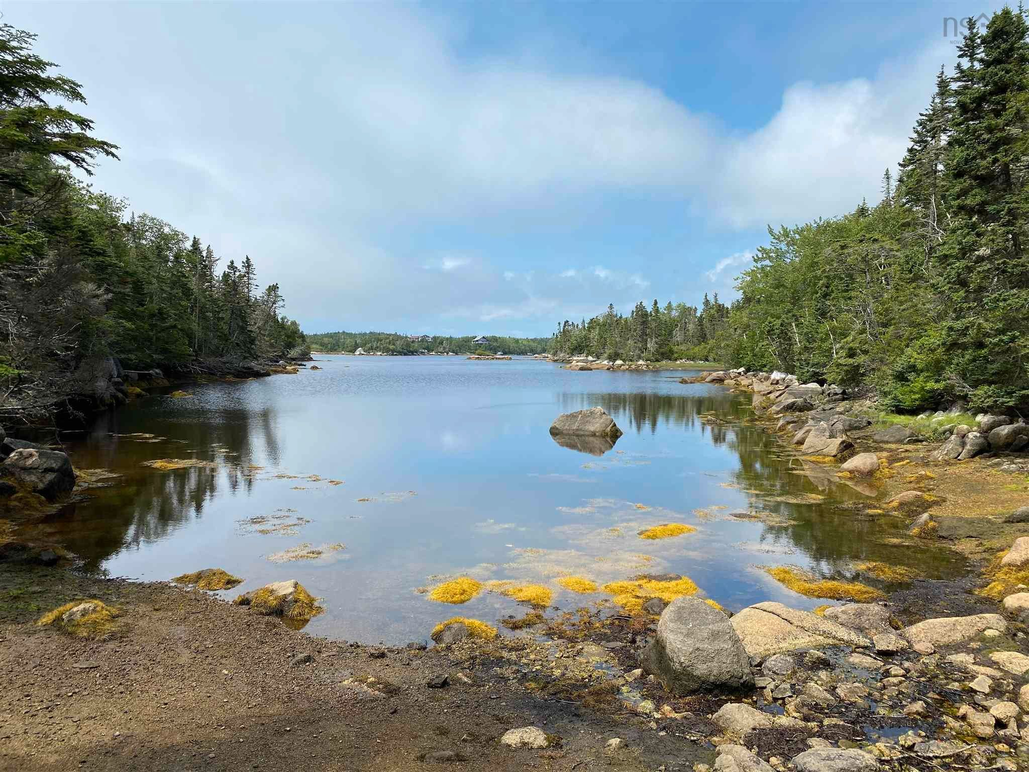 Main Photo: Scott's Point Road in East Dover: 40-Timberlea, Prospect, St. Margaret`S Bay Vacant Land for sale (Halifax-Dartmouth)  : MLS®# 202121077