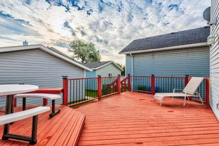 Photo 38: 18 Erin Meadow Close SE in Calgary: Erin Woods Detached for sale : MLS®# A1143099