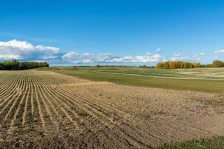 Photo 34: 56407 RGE RD 240: Rural Sturgeon County House for sale : MLS®# E4264656