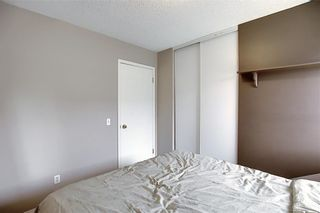 Photo 26: 47 INVERNESS Grove SE in Calgary: McKenzie Towne Detached for sale : MLS®# C4301288