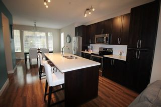 """Photo 5: 19 21867 50 Avenue in Langley: Murrayville Townhouse for sale in """"Winchester"""" : MLS®# R2256896"""