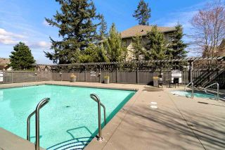 """Photo 36: 101 2738 158 Street in Surrey: Grandview Surrey Townhouse for sale in """"Cathedral Grove"""" (South Surrey White Rock)  : MLS®# R2560930"""