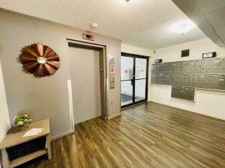 Photo 16: 110 10838 108 Street in Edmonton: Zone 08 Condo for sale : MLS®# E4231008