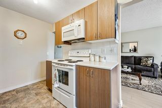 Photo 11: 313 42 Street SE in Calgary: Forest Heights Semi Detached for sale : MLS®# A1118275