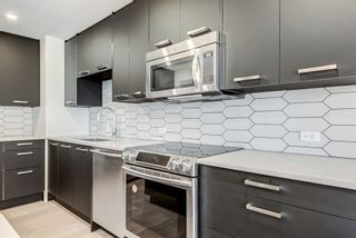 Photo 5: 305 330 26 Avenue SW in Calgary: Mission Apartment for sale : MLS®# A1098860