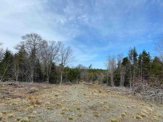 Photo 17: Lots Hectanooga Road in Mayflower: 401-Digby County Vacant Land for sale (Annapolis Valley)  : MLS®# 202118142