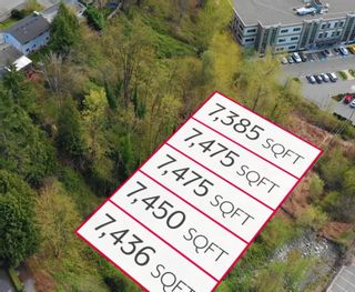 Photo 2: Lt.4 CAMPBELL Avenue in Abbotsford: Central Abbotsford Land for sale : MLS®# R2618714