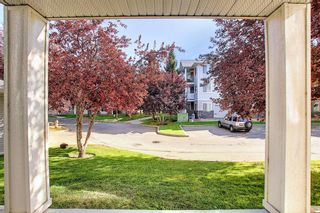 Photo 20: 105 5105 Valleyview Park SE in Calgary: Dover Apartment for sale : MLS®# A1138950