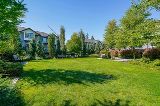 """Photo 32: 9 8570 204 Street in Langley: Willoughby Heights Townhouse for sale in """"WOODLAND PARK"""" : MLS®# R2614835"""