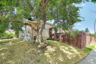 Photo 42: 51 Erin Park Close SE in Calgary: Erin Woods Detached for sale : MLS®# A1138830
