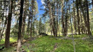 Photo 2: LOT 40 KALLUM DRIVE in 108 Mile Ranch: Vacant Land for sale : MLS®# R2591288