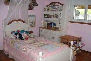 Photo 7:  in TORONTO: Freehold for sale (E10 - Scarborough)