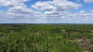 Photo 6: N/W Corner Rang 204 & Twp Rd 510: Rural Strathcona County Rural Land/Vacant Lot for sale : MLS®# E4247043