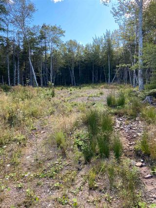 Photo 3: Lot 35 Wall Street in Cape George: 305-Richmond County / St. Peters & Area Vacant Land for sale (Highland Region)  : MLS®# 202123287