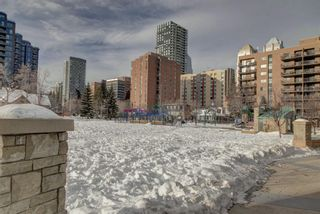 Photo 29: 203 215 14 Avenue SW in Calgary: Beltline Apartment for sale : MLS®# A1092010
