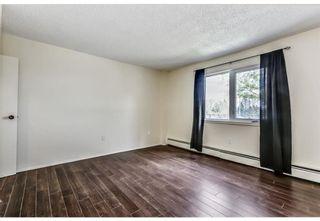 Photo 15: 118 816 89 Avenue SW in Calgary: Haysboro Apartment for sale : MLS®# A1059507