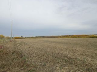 Photo 24: 55101 RR 270: Rural Sturgeon County Rural Land/Vacant Lot for sale : MLS®# E4265205