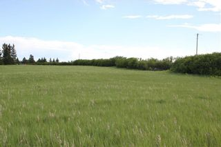 Photo 6: 198010 96th ST W: Rural Foothills County Land for sale : MLS®# C4253512