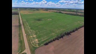 Photo 2: Lily Lake Rd Between Twp 564 & 570: Rural Sturgeon County Rural Land/Vacant Lot for sale : MLS®# E4245046