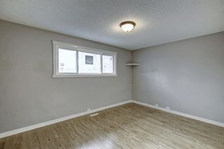 Photo 16: 4604 Maryvale Drive NE in Calgary: Marlborough Detached for sale : MLS®# A1090414