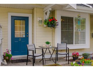 """Photo 27: 3 23575 119 Avenue in Maple Ridge: Cottonwood MR Townhouse for sale in """"HOLLYHOCK"""" : MLS®# R2490627"""