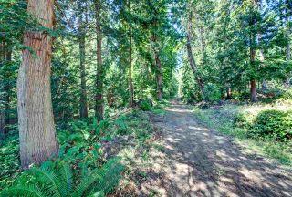 Photo 5: Lot 4 WAKEFIELD Road in Sechelt: Sechelt District Land for sale (Sunshine Coast)  : MLS®# R2428424
