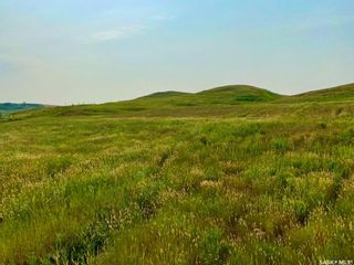 Photo 38: Unvoas Farm in Swift Current: Farm for sale (Swift Current Rm No. 137)  : MLS®# SK864766
