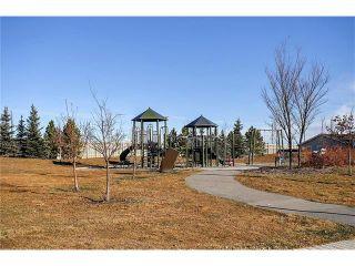 Photo 25: 169 MAHOGANY Heights SE in Calgary: Mahogany House for sale : MLS®# C4088923