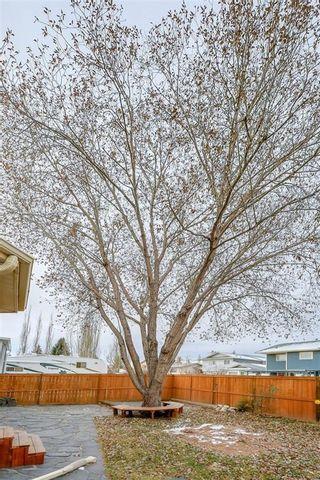 Photo 45: 29 SUNDOWN Way SE in Calgary: Sundance Detached for sale : MLS®# C4216196