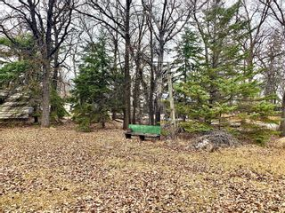 Photo 3: 169 Campbell Avenue West in Dauphin: Dauphin Beach Residential for sale (R30 - Dauphin and Area)  : MLS®# 202112956