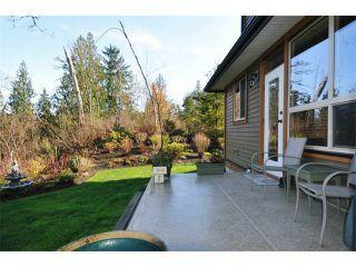 "Photo 18: 31 24185 106B Avenue in Maple Ridge: Albion Townhouse for sale in ""TRAILS EDGE"" : MLS®# V1055374"