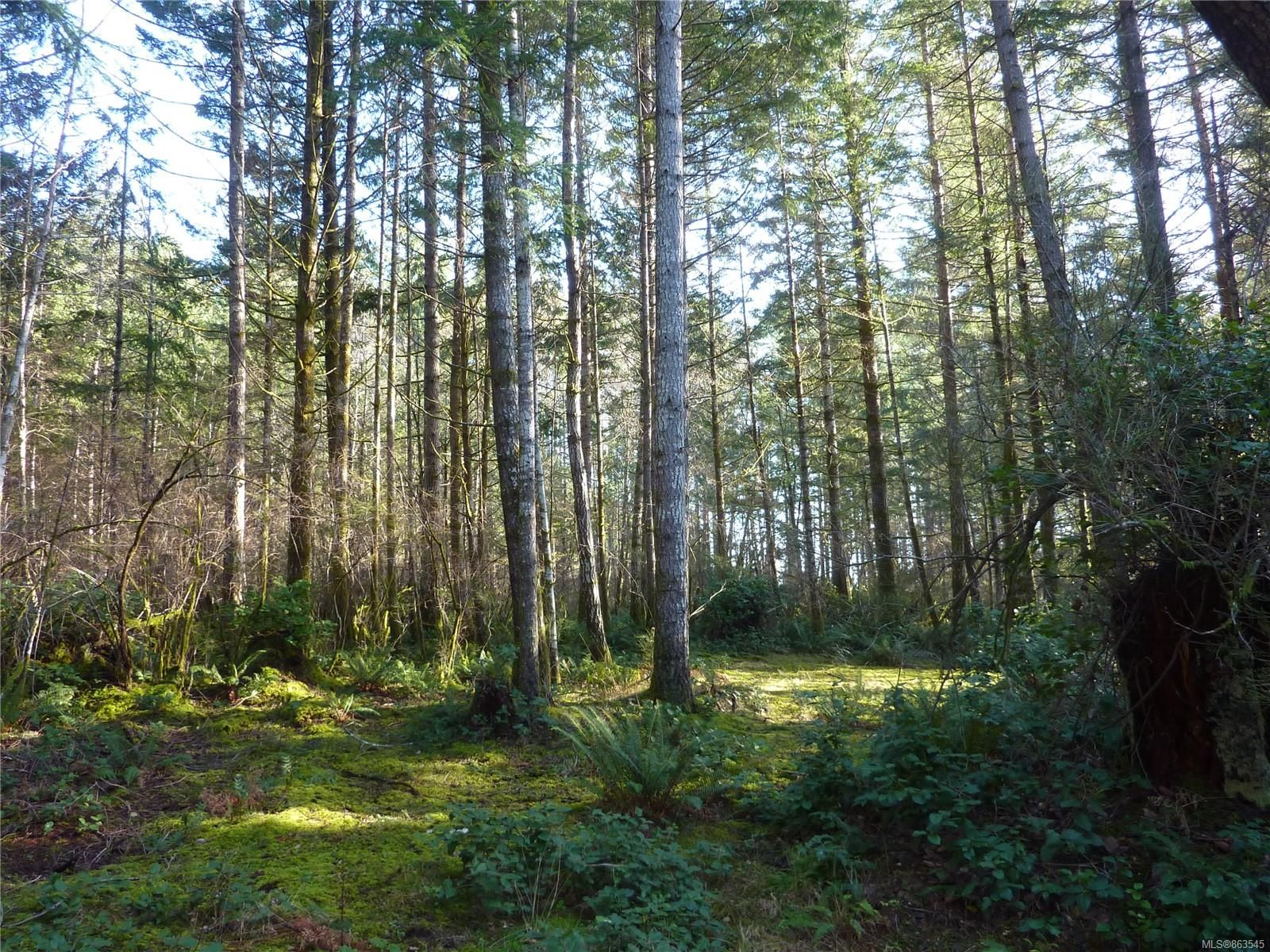 7.76 acre lot located on the south end of Quadra Island!