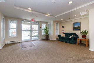 Photo 21: 202 1536 Hillside Ave in VICTORIA: Vi Oaklands Condo for sale (Victoria)  : MLS®# 808123